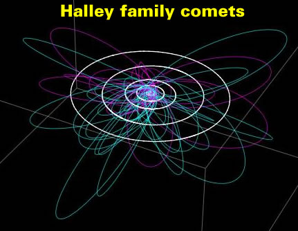 Halley family comets