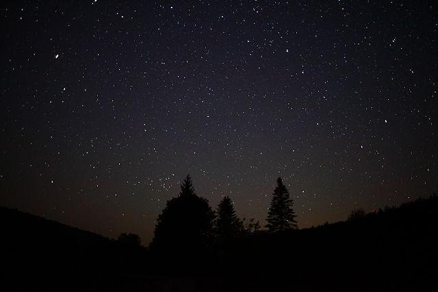 Night-sky-stars-forest-trees_-_West_Virginia_-_ForestWander