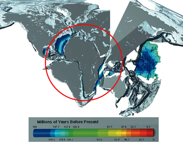 Earth crust with new seafloor removed