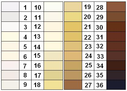 Felix von Luschan Skin Color Chart