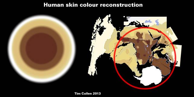 Human skin colour reconstruction