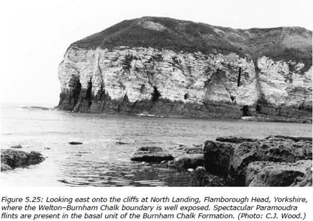 North Landing, Flamborough Head, Yorkshire