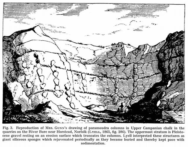 Paramoudra columns - Lyell1865
