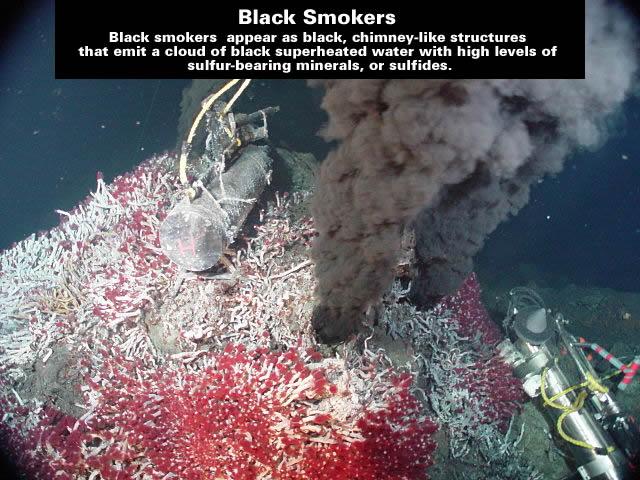 Sully vent - black smoker