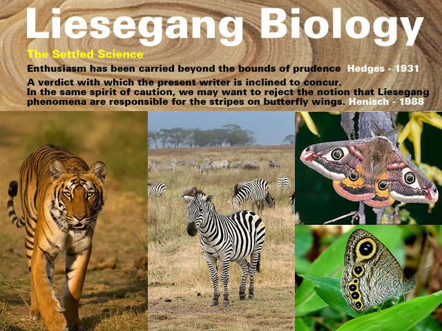 Liesegang Biology