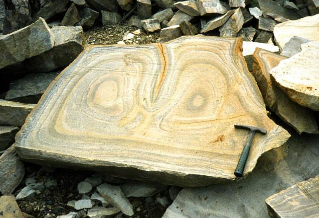 Liesegang Rings in Sandstone