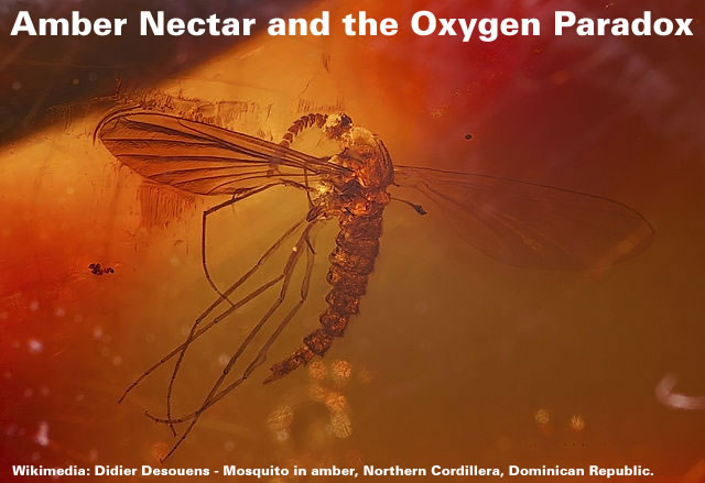 Amber Nectar and the Oxygen Paradox