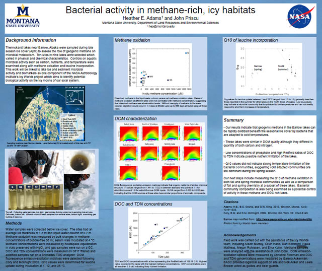 Bacterial activity in methane-rich, icy habitats