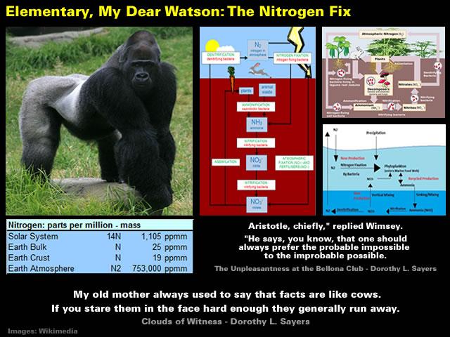 Elementary, My Dear Watson - The Nitrogen Fix