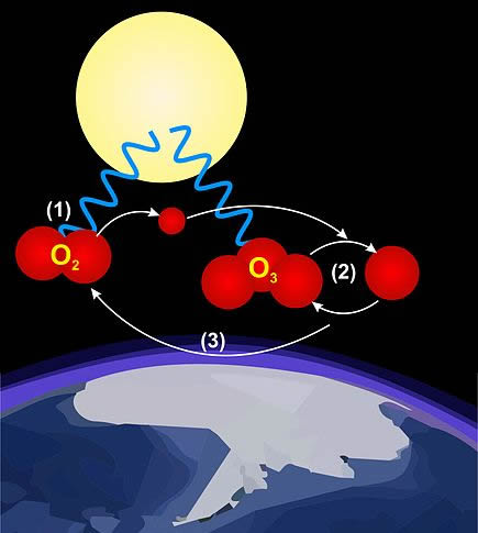 The post-normal Oxygen-Ozone Cycle