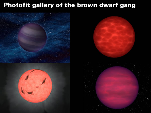Photofit gallery of brown dwarfs