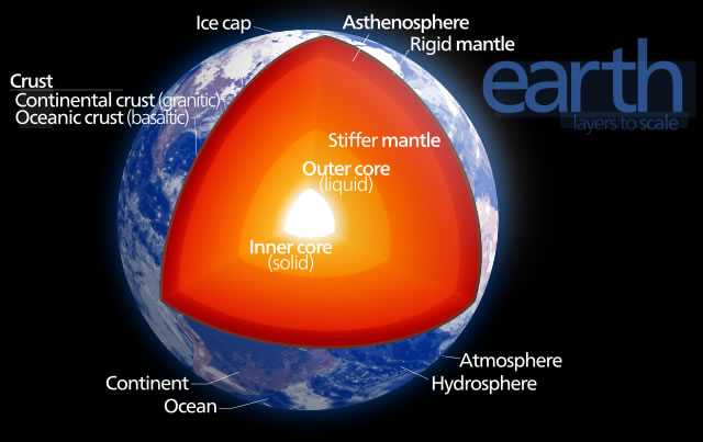 The liquid outer core
