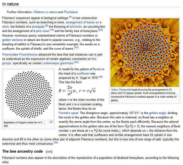 Fibonacci Series in Nature