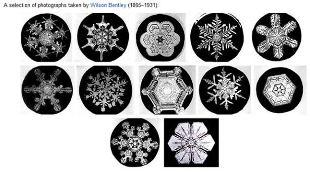 Snowflakes by Wilson Bentley 1865–1931