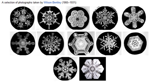 Snowflakes by Wilson Bentley 1865–1931