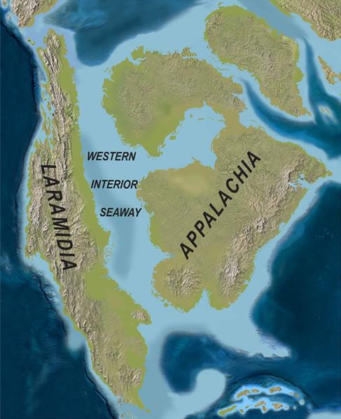 The Cretaceous Seaway