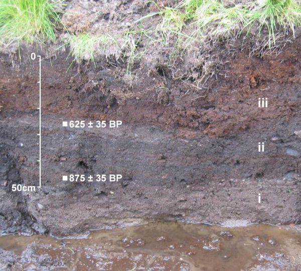 Greenland ditch section