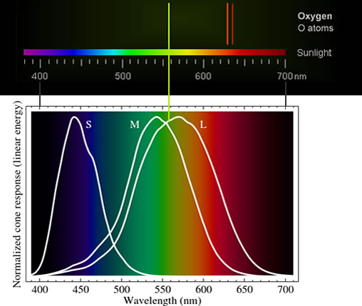 Oxygen Spectral Lines The Fluorescing Univer...