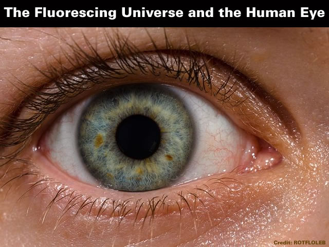 The Fluorescing Universe and the Human Eye