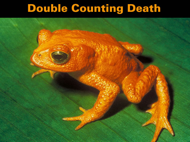 Double Counting Death
