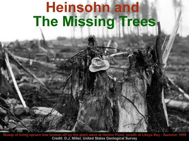 Heinsohn and The Missing Trees