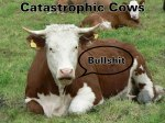 Catastrophic Cows