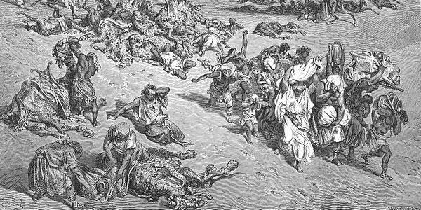 The Fifth Plague - Livestock Disease