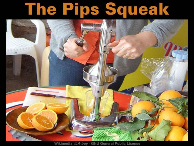 The Pips Squeak