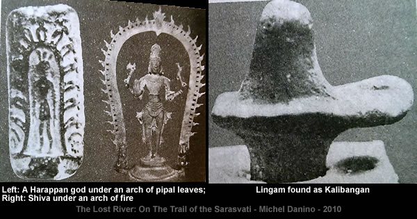 Harappan artefacts