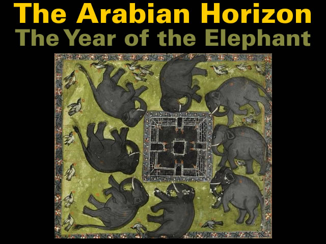 the-year-of-the-elephant