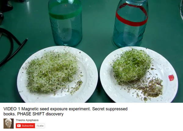 magnetic-seed-exposure-experiment
